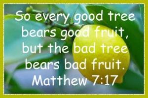 Every Good Tree Bears Good Fruit