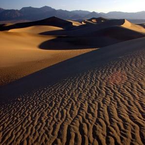Desert Wilderness