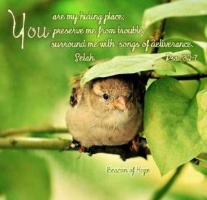 Psalm 32:7 Google Images