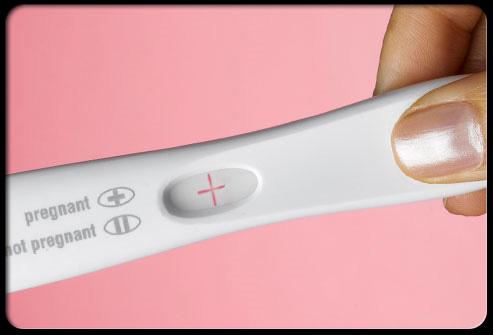 conception_pregnancy_hormones_s8_2